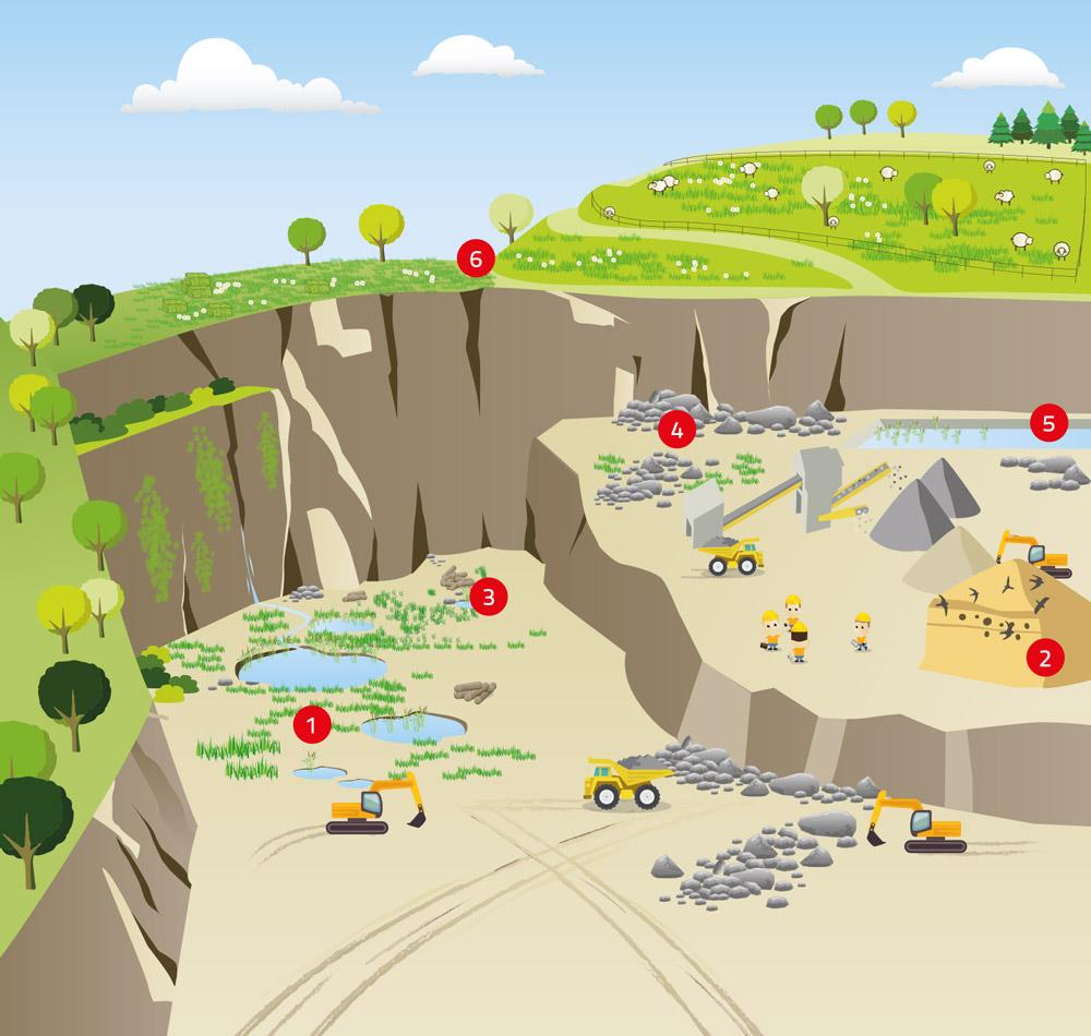 Schéma d'une carrière - Gestion de la biodiversité