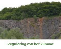 FAQ-Q1-photo6-NL